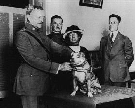 Stubby Being Decorated by General Pershing.